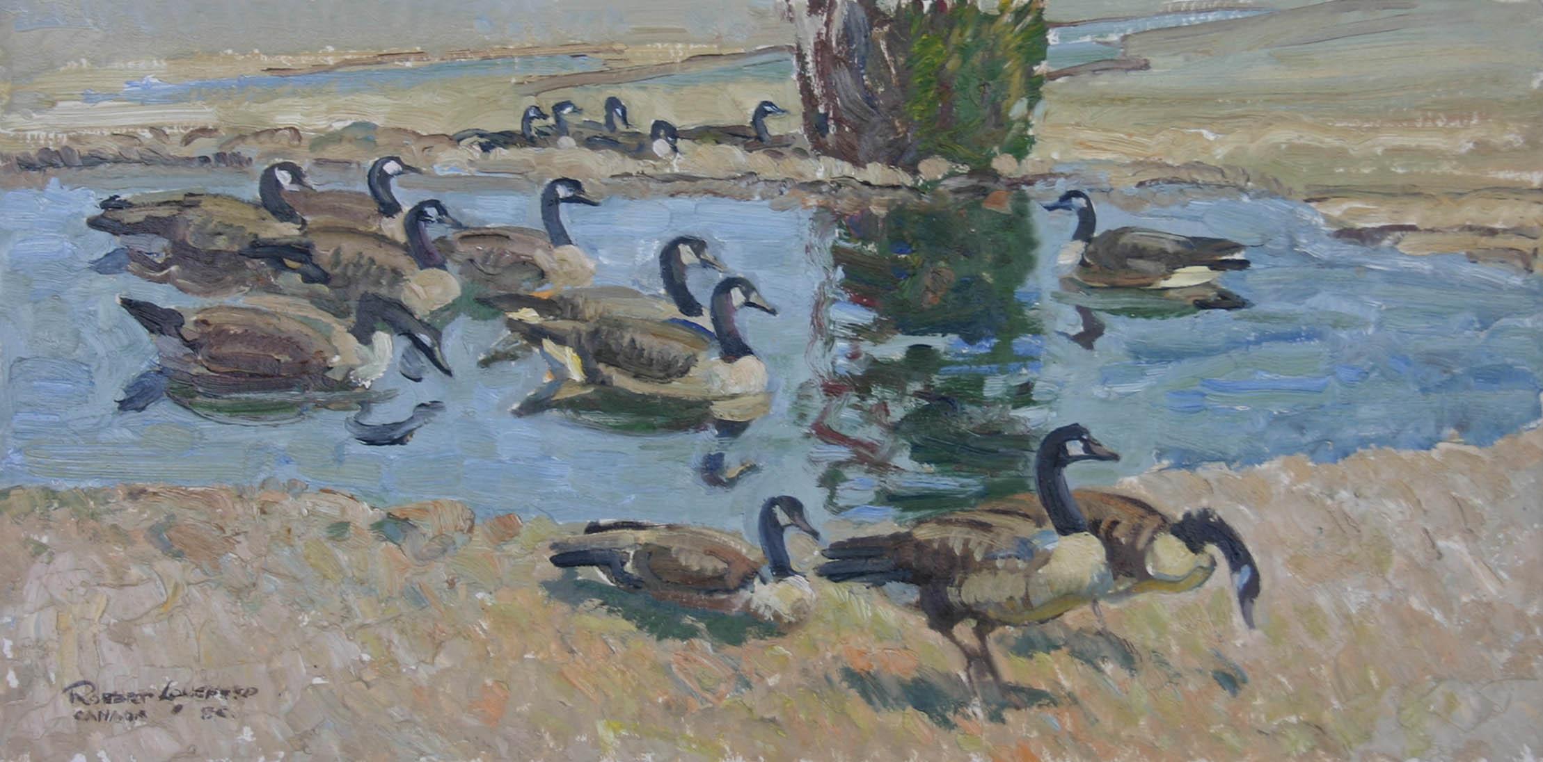 Canada Geese by  Robert Lougheed - Masterpiece Online
