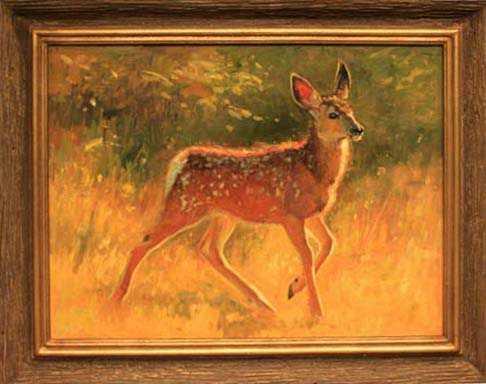 Mule Deer Fawn by  Michael Romney - Masterpiece Online