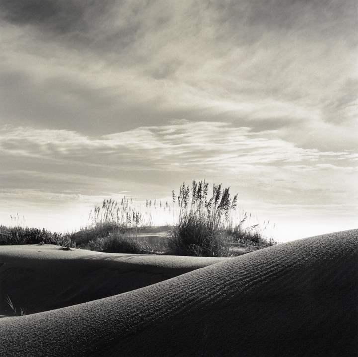 Atlantic Dune B by  Michael Kahn - Masterpiece Online