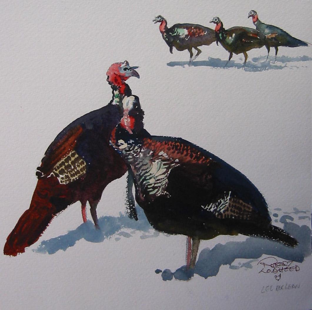 Turkeys Sketch by  Robert Lougheed - Masterpiece Online