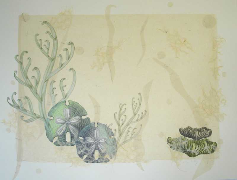 Coral Collage 7 by  Margo Ray - Masterpiece Online