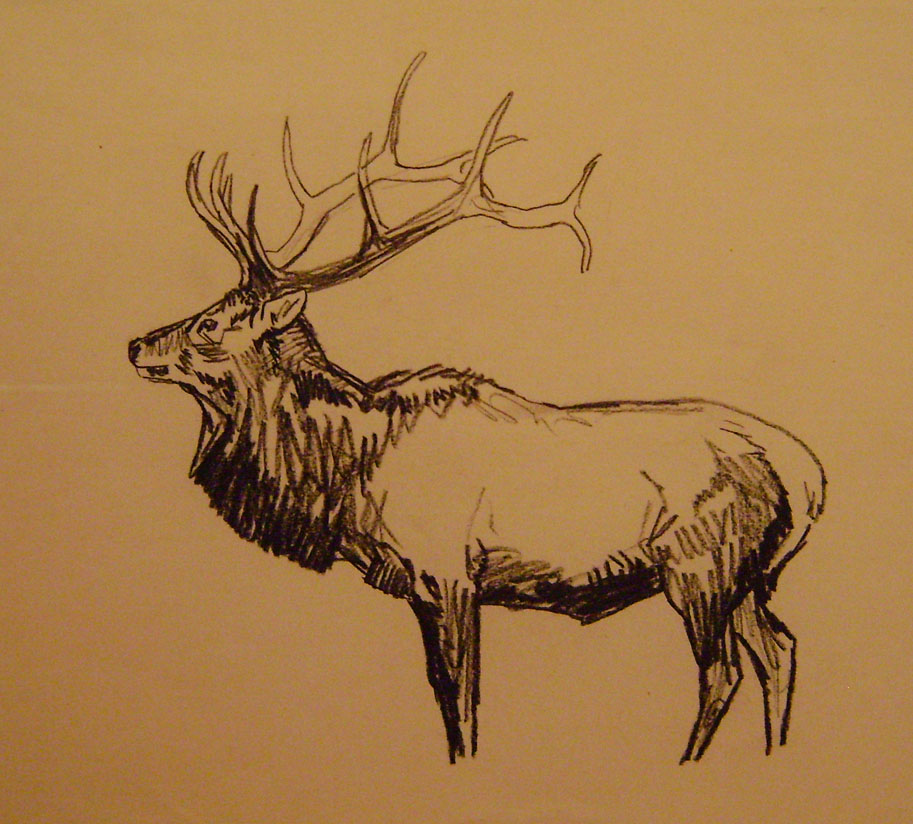 Elk by  Robert Lougheed - Masterpiece Online