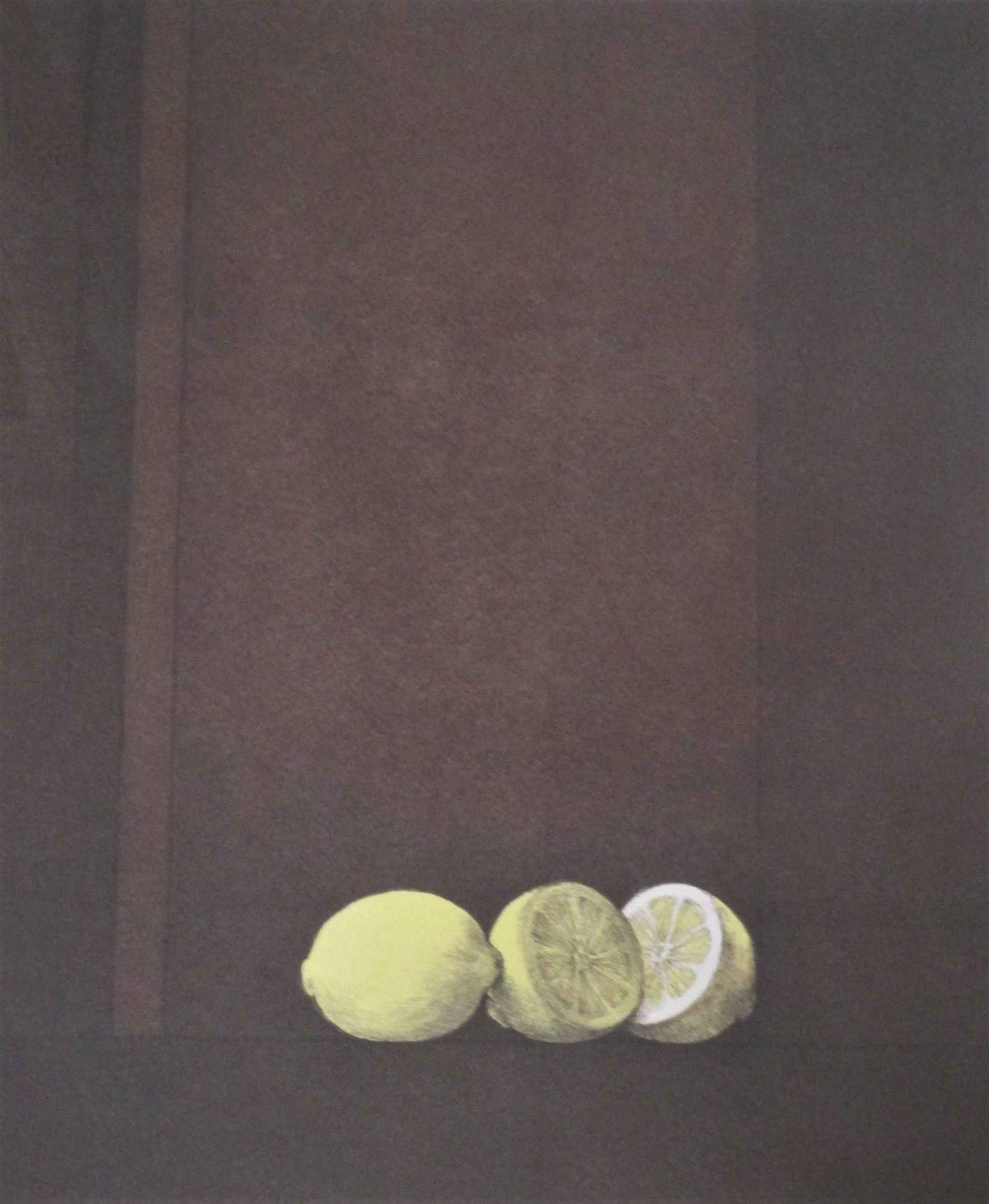 Unknown (lemons) by  Sally Haley - Masterpiece Online