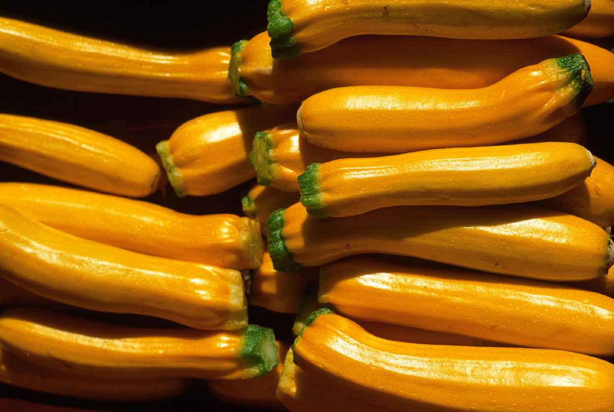 Yellow Squash, Farmer... by  Alison Shaw - Masterpiece Online