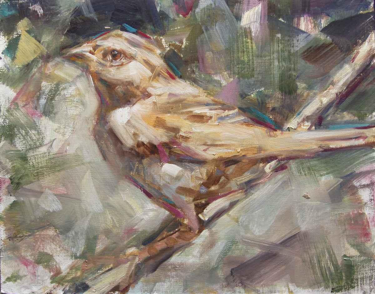 Finch by Mr. Kevin Beilfuss - Masterpiece Online