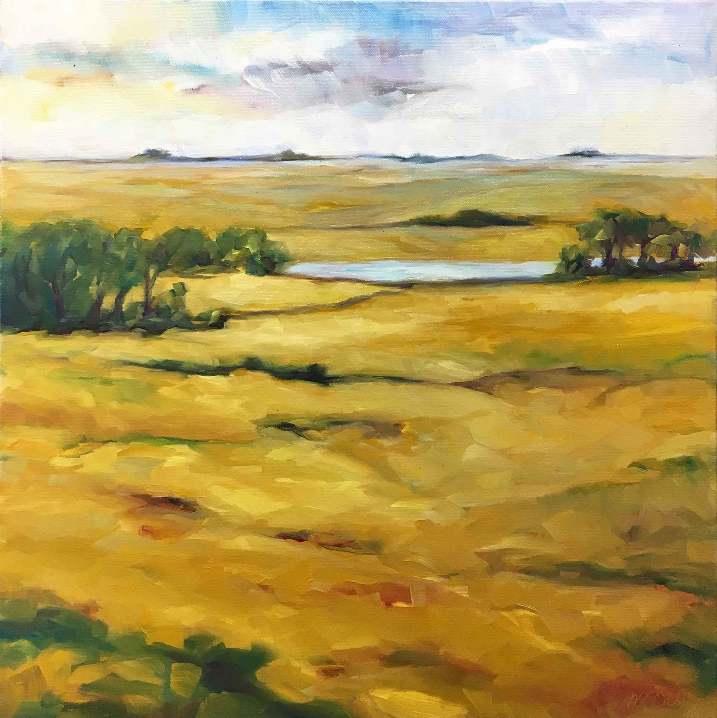 Natural Grasslands  by  Carol McCall
