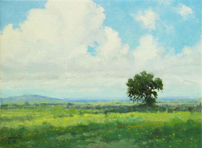 Solitary Oak by Mr. & Mrs. Robert Pummill - Masterpiece Online