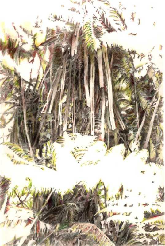 High Noon #A Ed: 2/100 by  Shingo Honda - Masterpiece Online