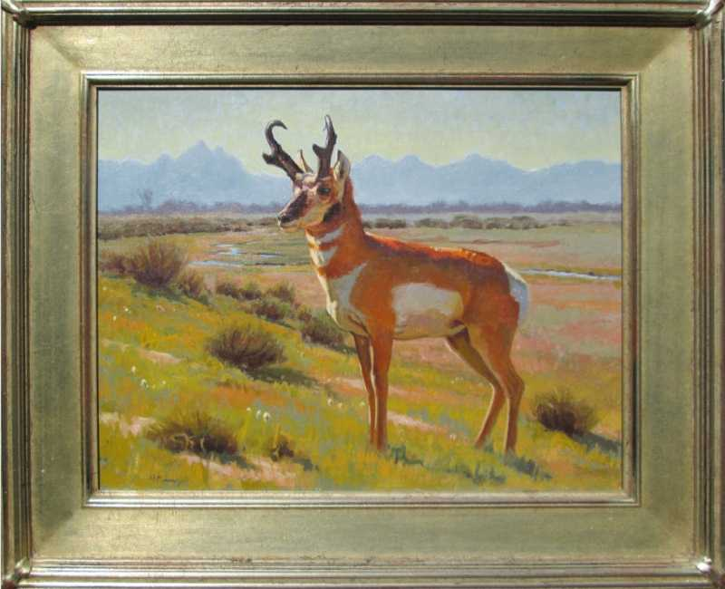 Teton Pronghorn by  Michael Romney - Masterpiece Online
