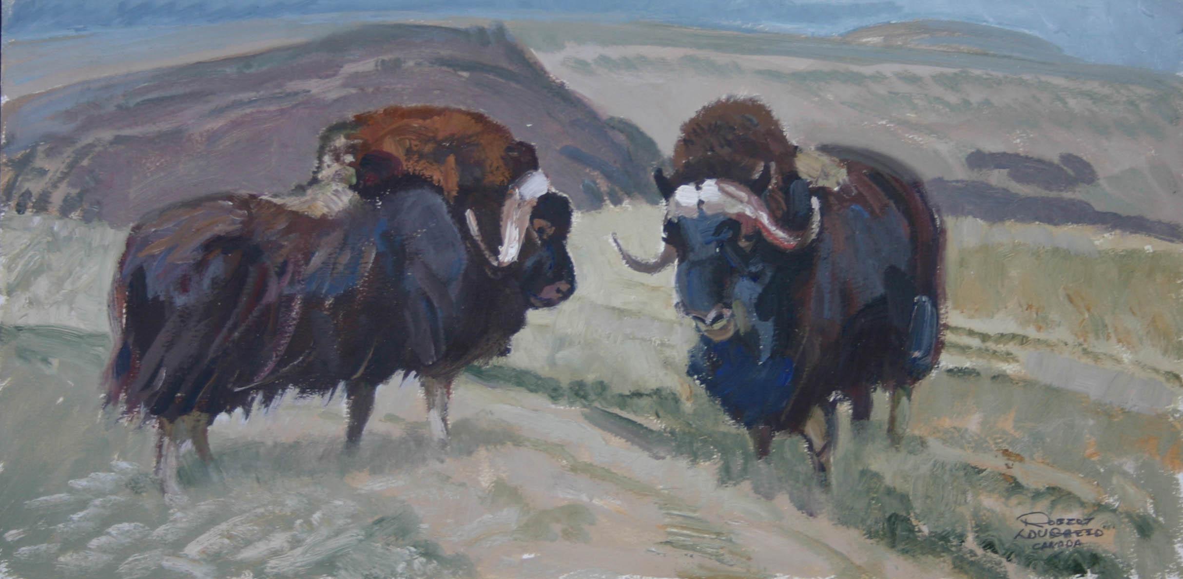 Two Musk Oxen by  Robert Lougheed - Masterpiece Online