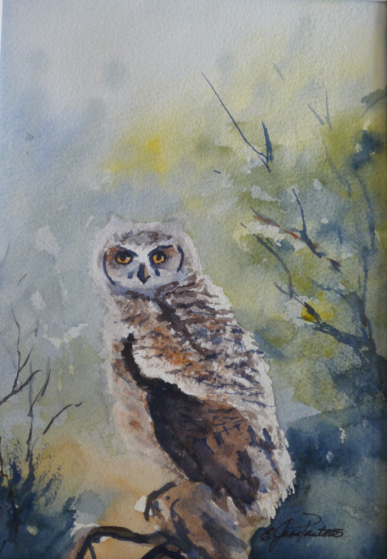 BABY OWL by  Jean Pastore - Masterpiece Online