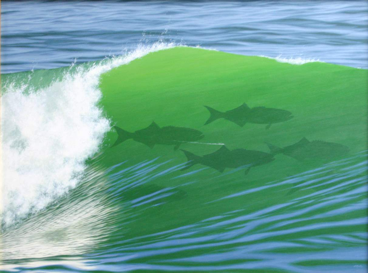 To Surf or Fish by  Forrest Rodts - Masterpiece Online