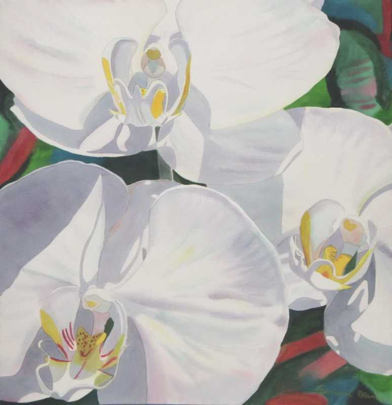 Close Up 3 White Orch... by  Fabienne Blanc - Masterpiece Online