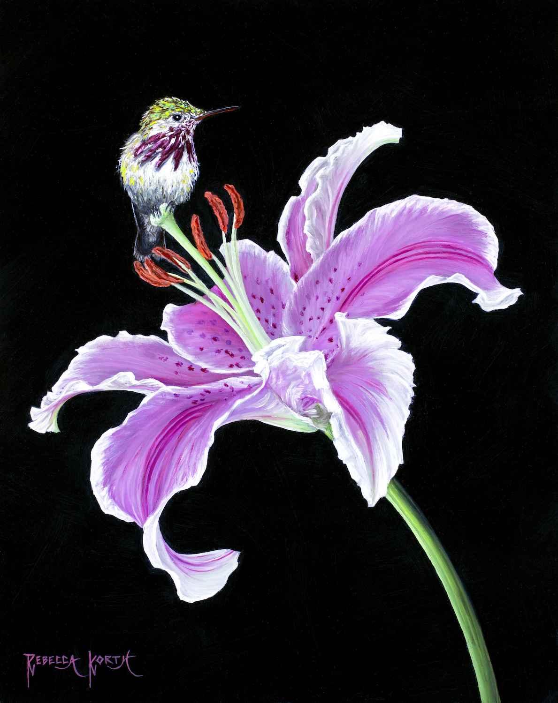 Hummingbird & Lily