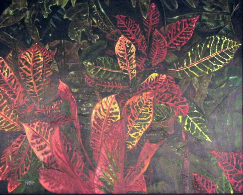 Crotons by  Madeleine Mckay - Masterpiece Online