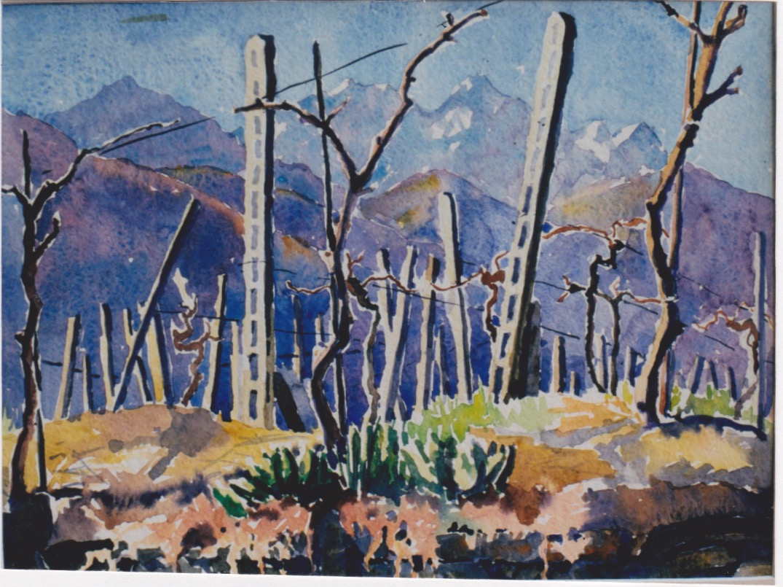 Alpine Vineyard by  Melissa Hefferlin - Masterpiece Online