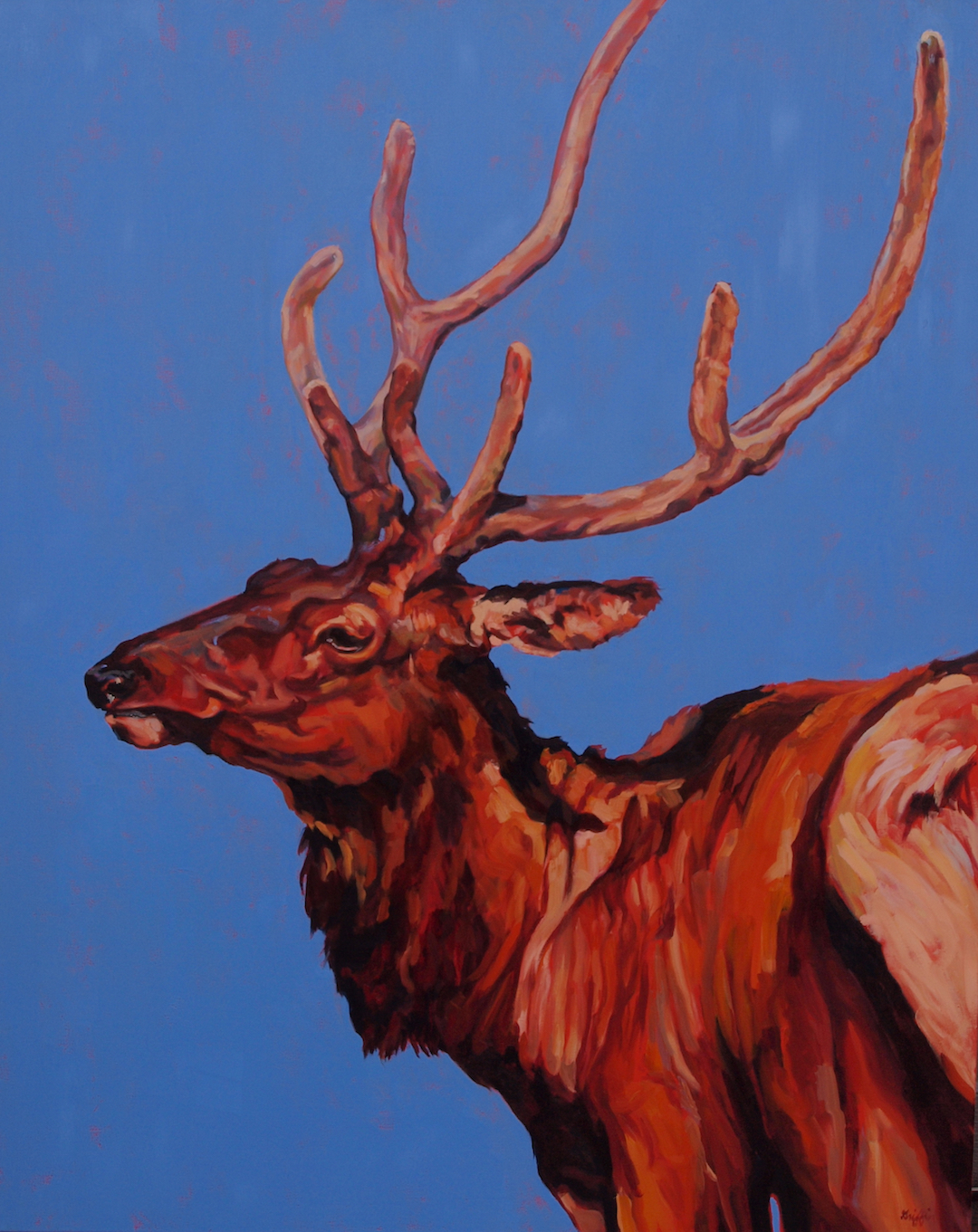 Stag by  Patricia A. Griffin - Masterpiece Online