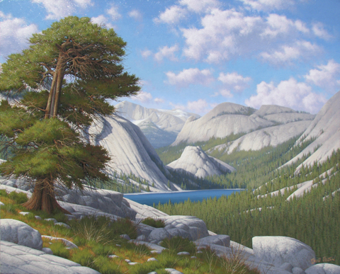 Tenaya Lake by  David  Dalton  - Masterpiece Online