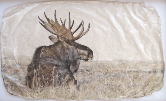 Moose by  Pete Zaluzec - Masterpiece Online