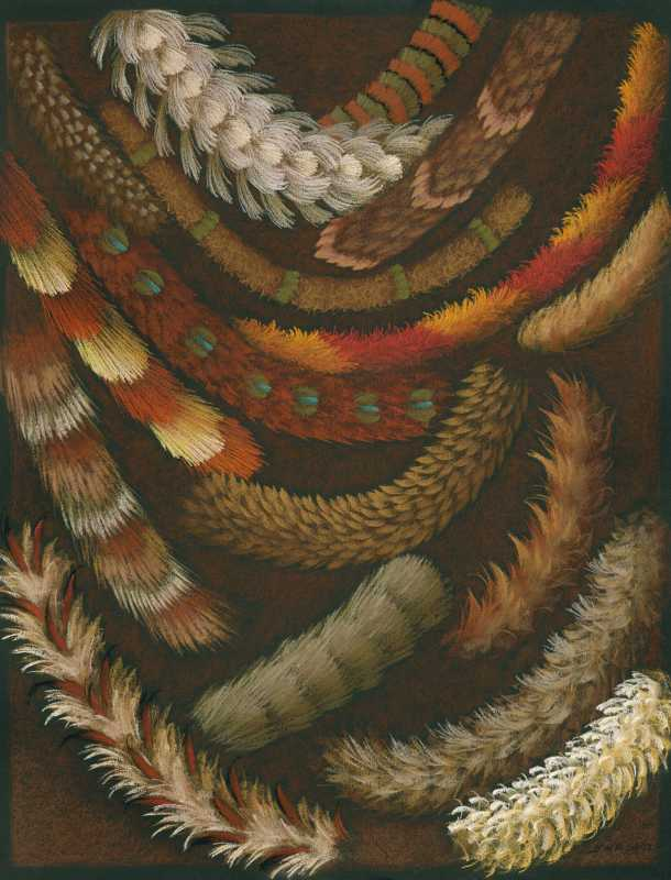 Feather Sketch 5 by  Shelley S. M. Miller - Masterpiece Online