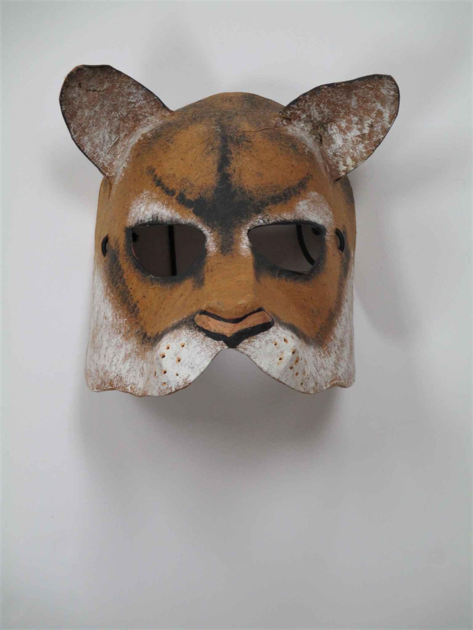 Unknown (Fox mask) by  Debra Fisher - Masterpiece Online