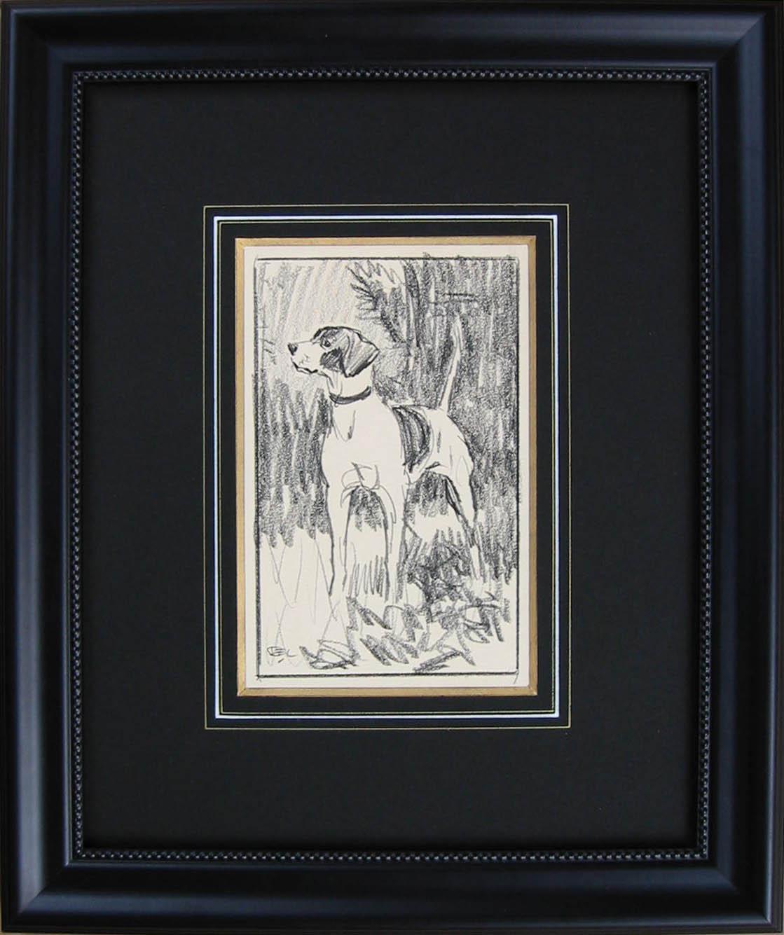 D 3006 Hound Drawing 1 by  Robert Lougheed - Masterpiece Online