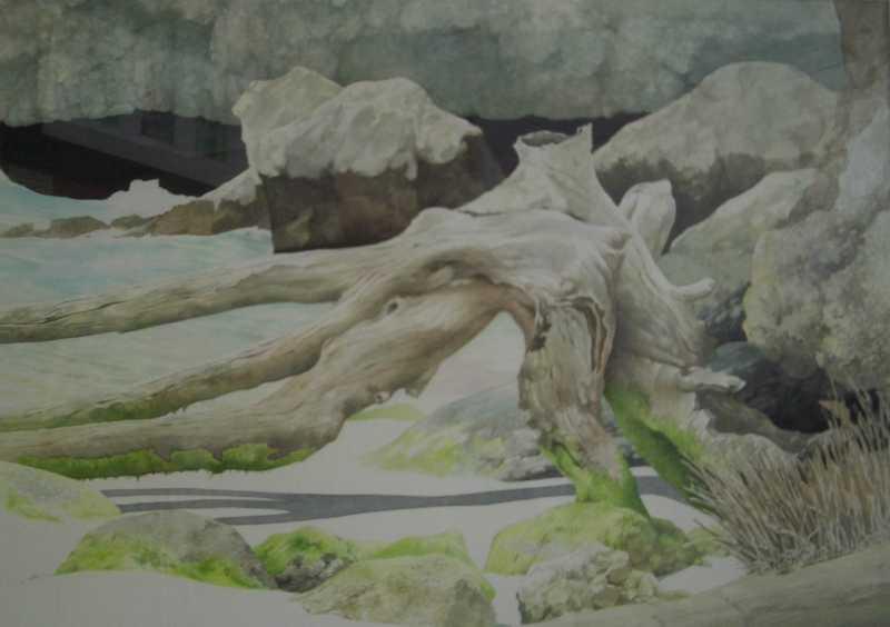 Driftwood Cranes Bay by Mr. Stephen Bonner - Masterpiece Online