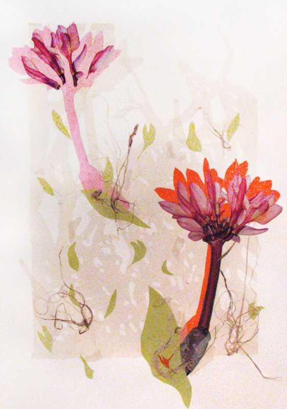Plumeria Collage 1 by  Margo Ray - Masterpiece Online