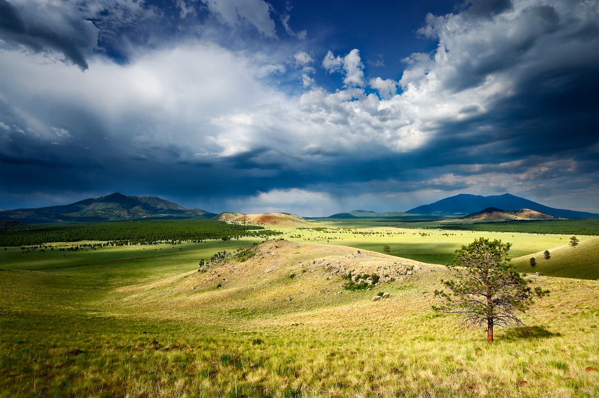 Prairie Thunder- Gove...