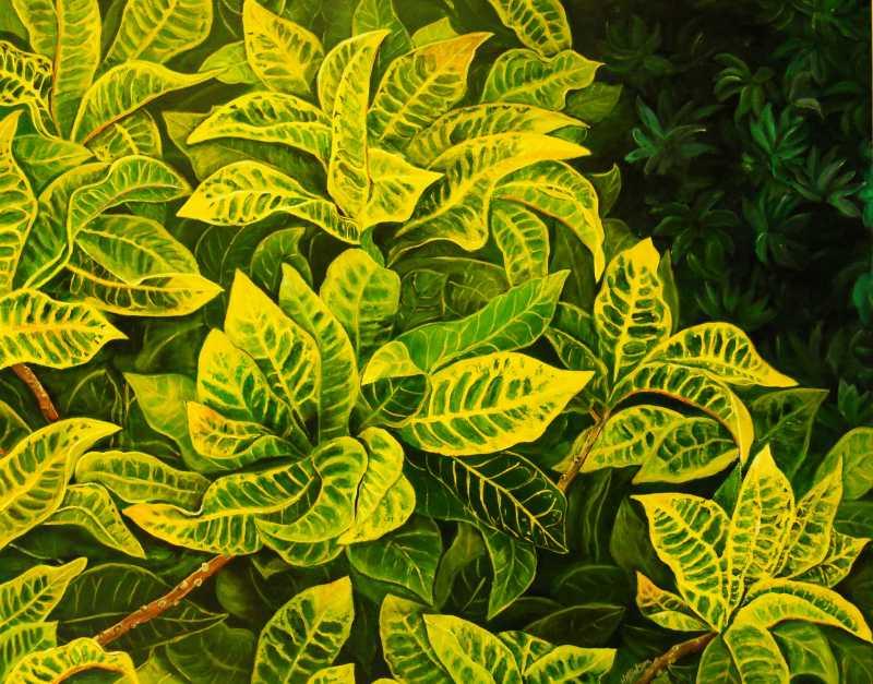 Yellow Fusion by Mrs. Hazel-Ann Mahy-Batson - Masterpiece Online