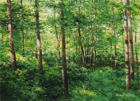 Early Summer Foliage by  Michael Wheeler - Masterpiece Online
