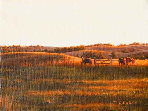 South Pasture at Suns... by   Teresa  Wheeler - Masterpiece Online