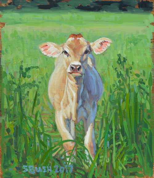 Cow Study 21 by  Stephanie Bush - Masterpiece Online