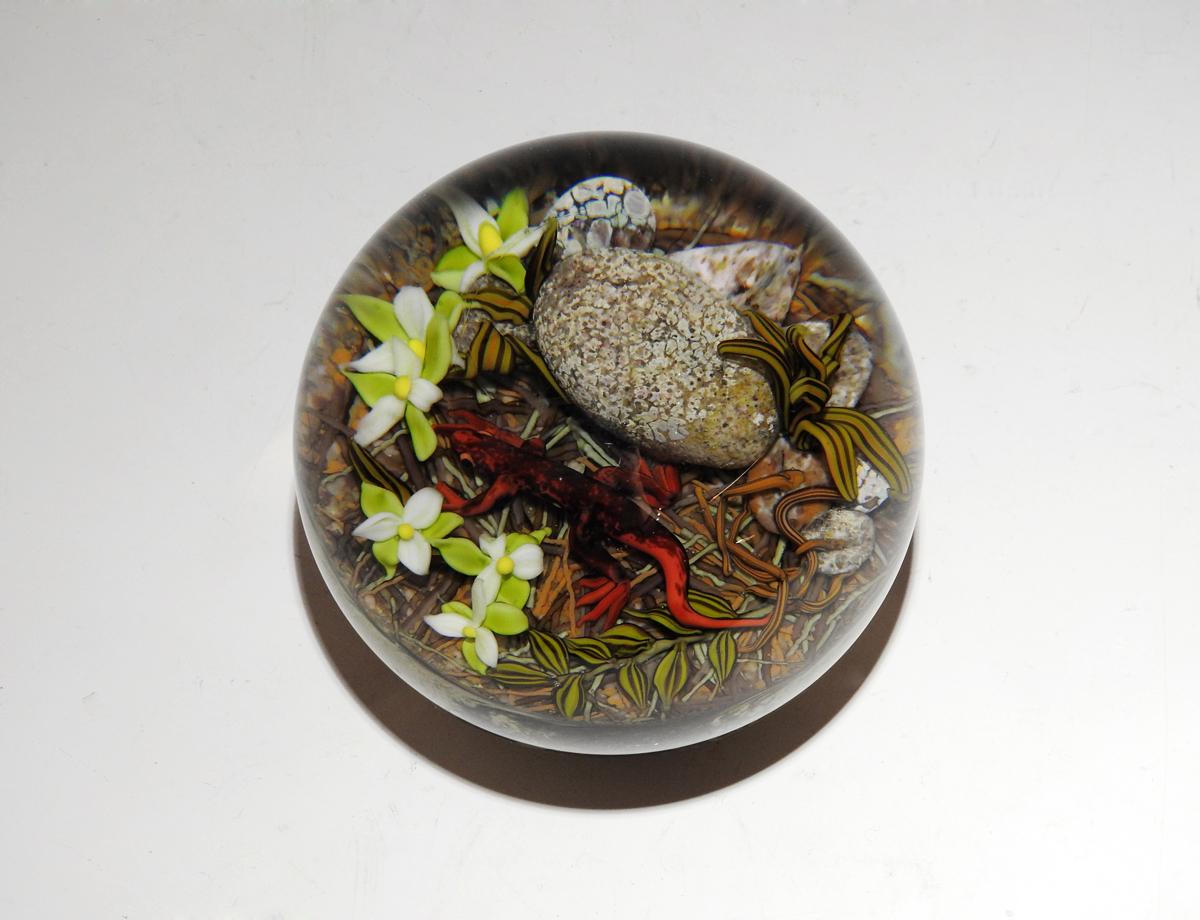 Salamander w/Trillium by  Cathy Richardson - Masterpiece Online