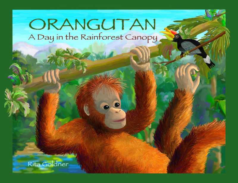 Orangutan, A Day in t... by  Rita Goldner - Masterpiece Online