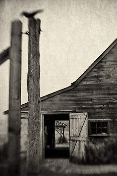 The Open Door, 2010 by  Michael Stimola - Masterpiece Online