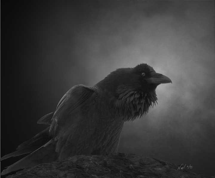 Raven Raven Listening by  Noel Nic'Fergusson - Masterpiece Online