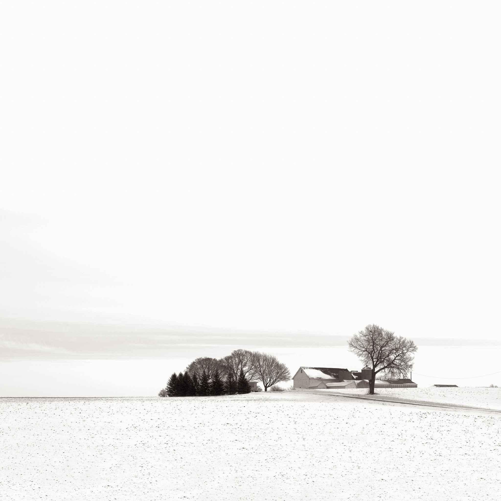 Winterscape by  Michael Knapstein - Masterpiece Online