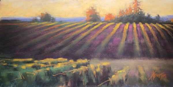 Vineyard Eve  by  Amanda Houston