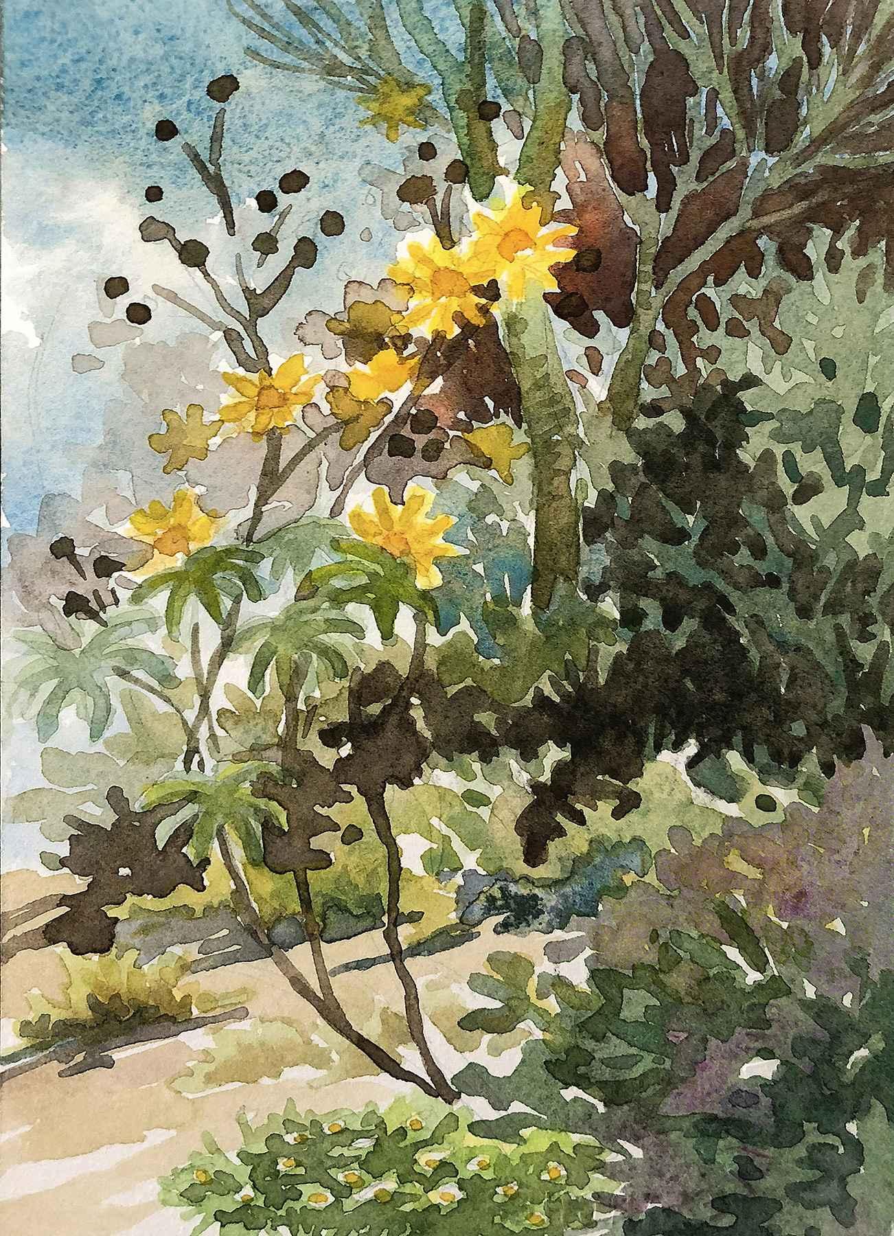 Mexican Sunflowers by  Ellen Fountain - Masterpiece Online