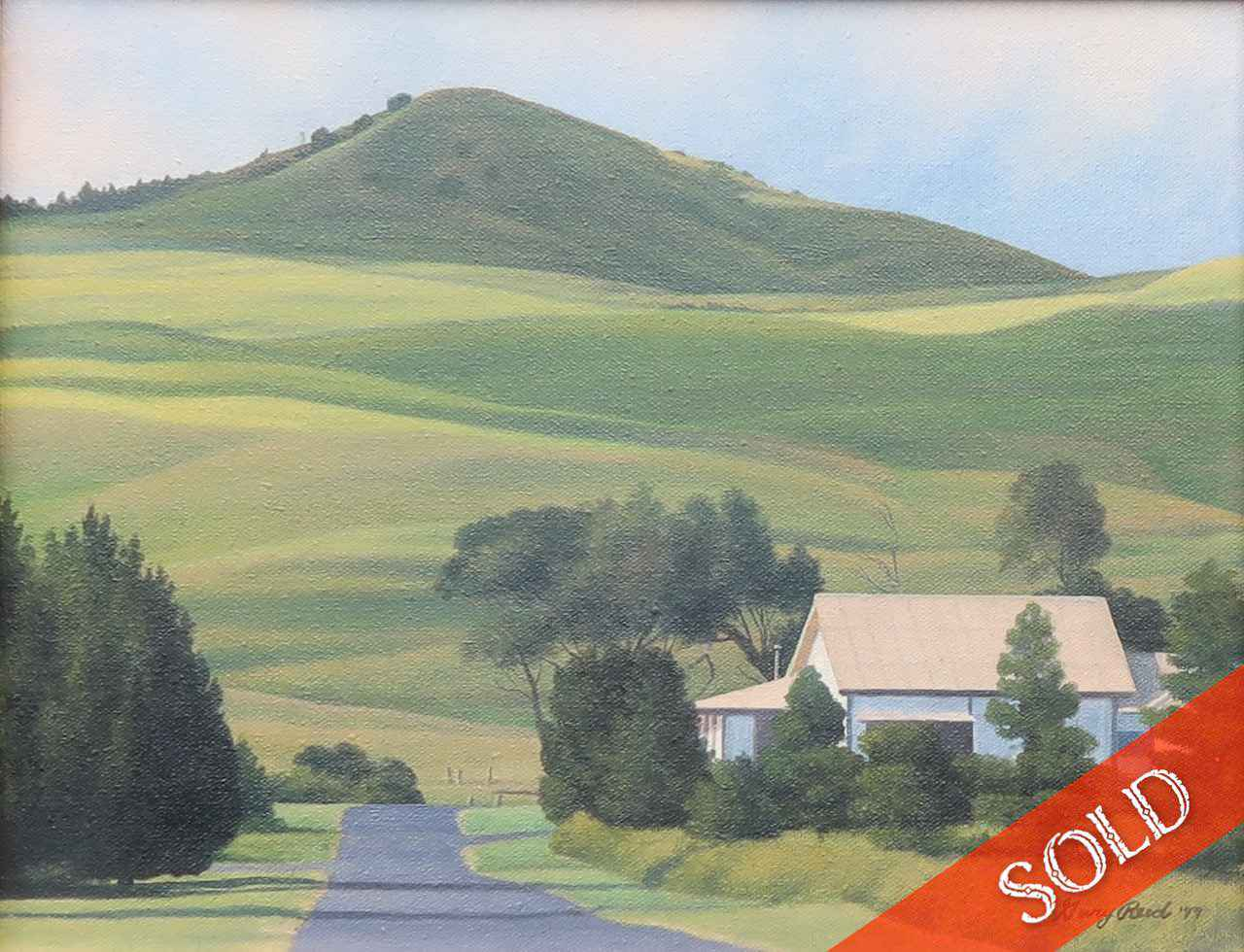 Waiaka House by Mr. Gary Reed - Masterpiece Online