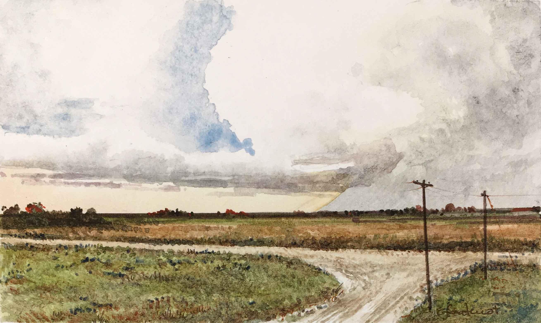 Bluster  by  Ralph Fontenot