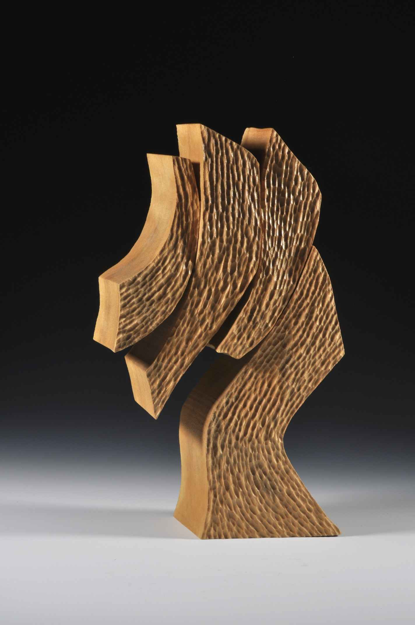 Leaning Forward by  Robyn Horn - Masterpiece Online