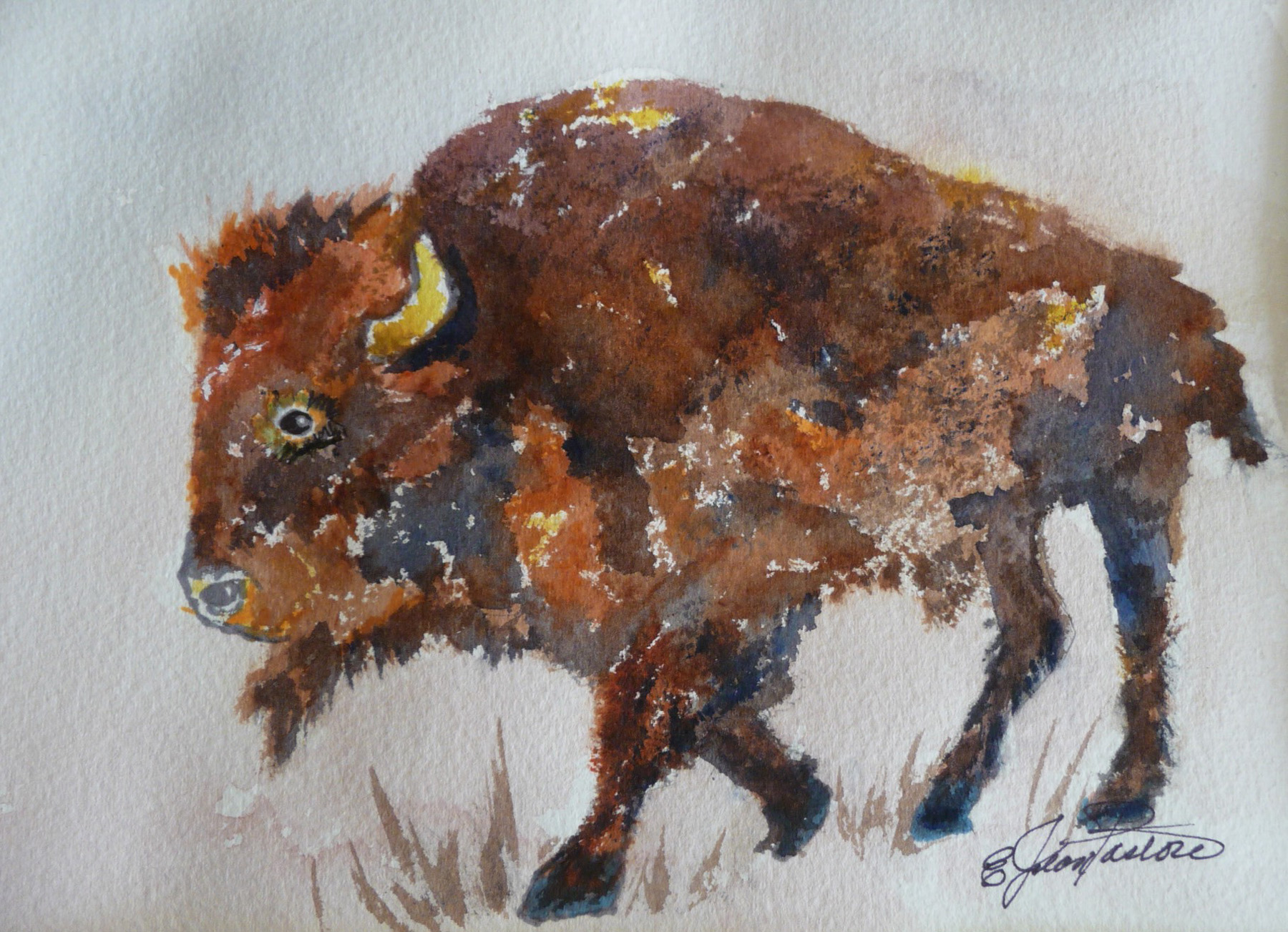 COLORFUL BISON by  Jean Pastore - Masterpiece Online