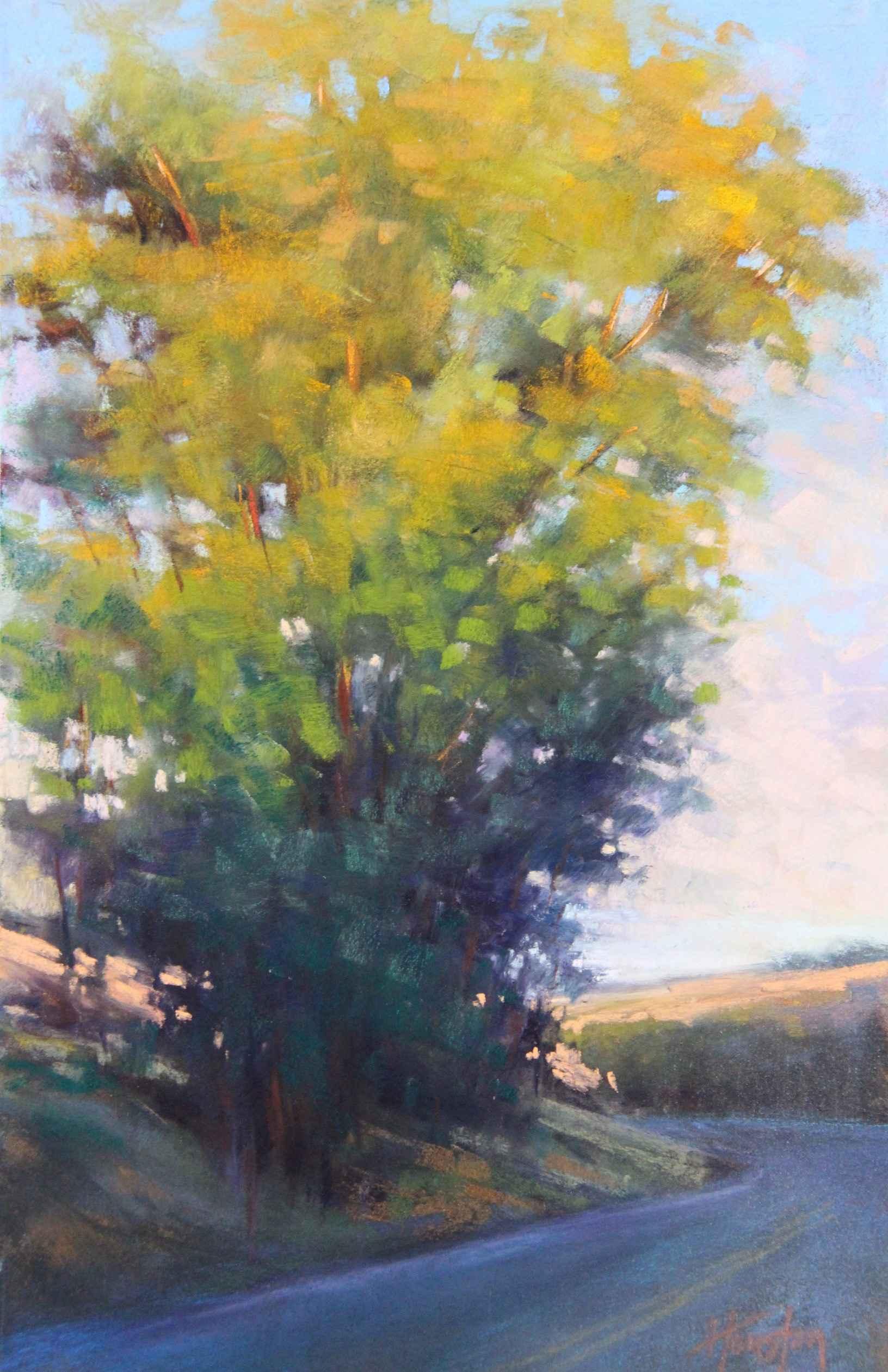 Chasing the Light by  Amanda Houston - Masterpiece Online