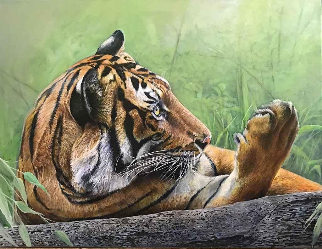 Tiger Paws by  Kris Henderson - Masterpiece Online