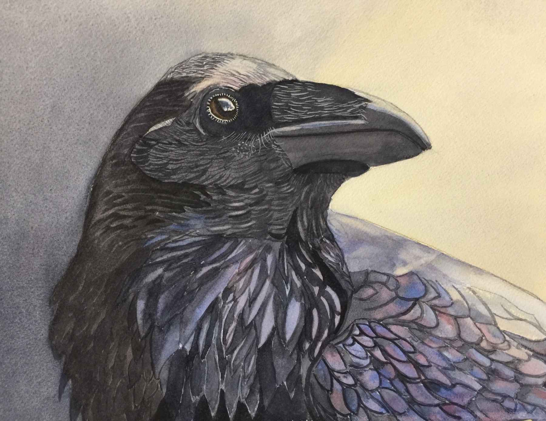 Here is a Raven Everm... by  Carolyn Streed - Masterpiece Online