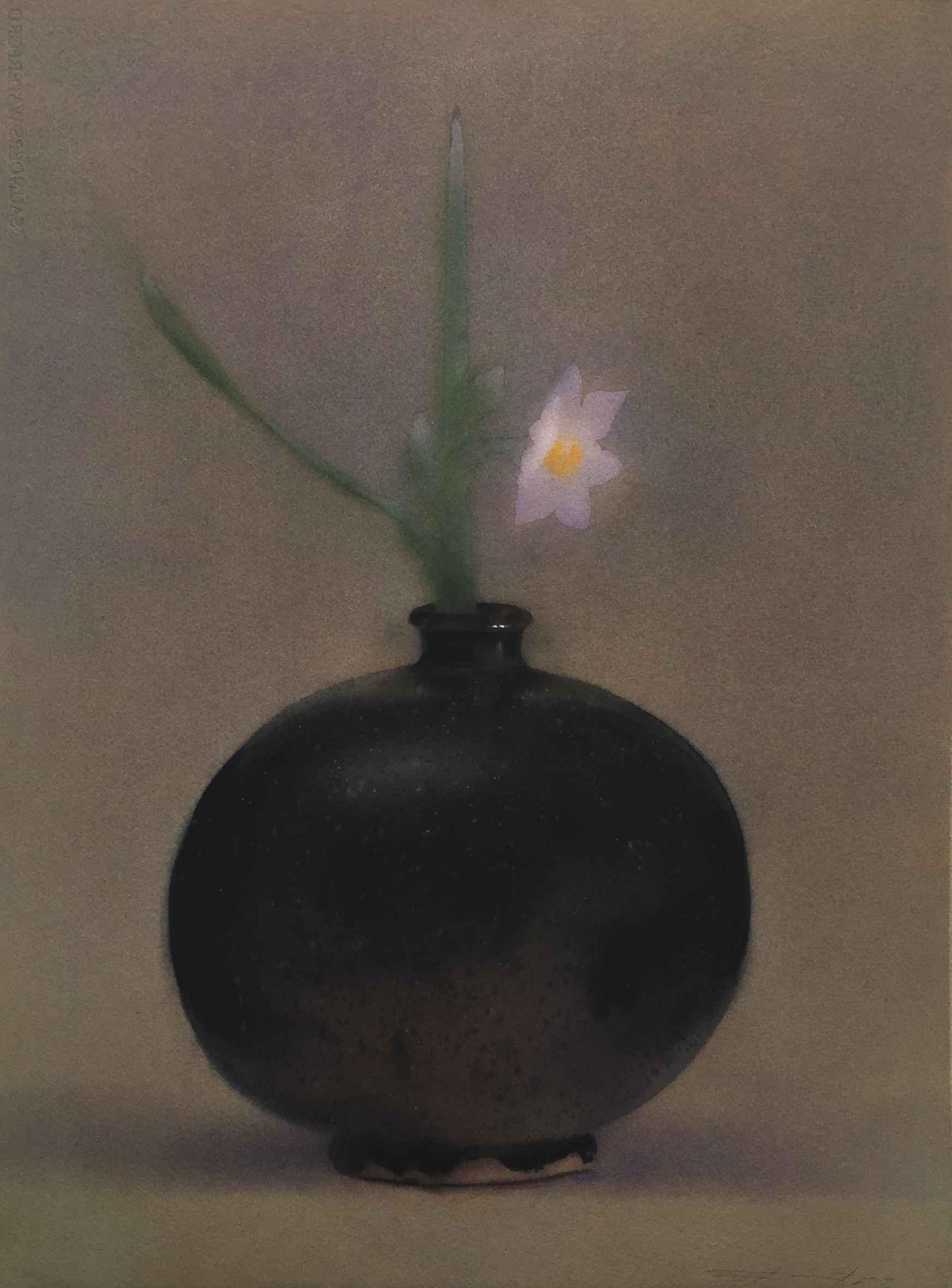 Midnight Narcissus by  Joel Stewart - Masterpiece Online