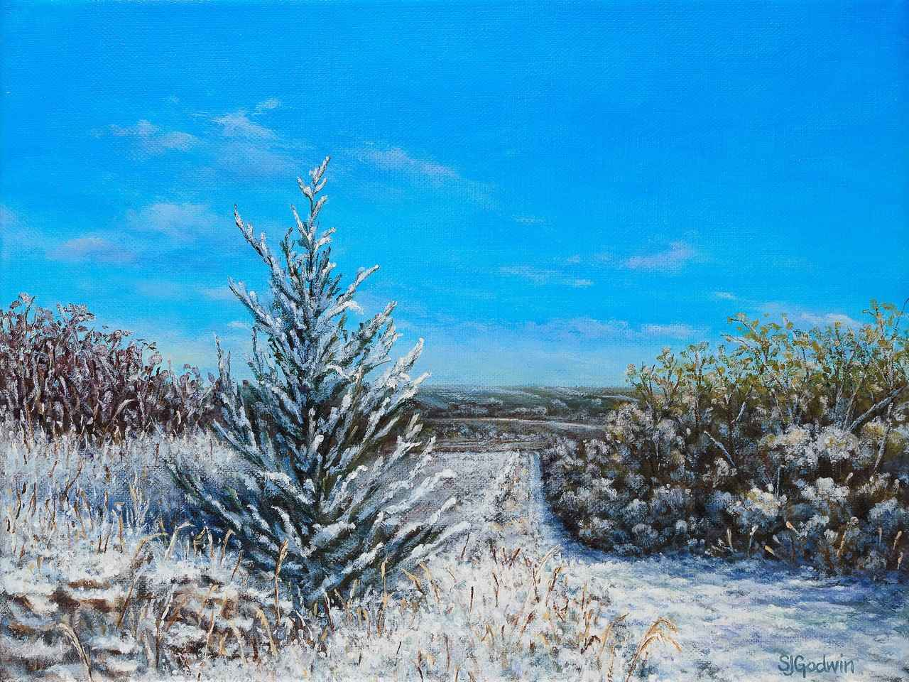 Early Snow in the Fli... by  Sue Godwin - Masterpiece Online
