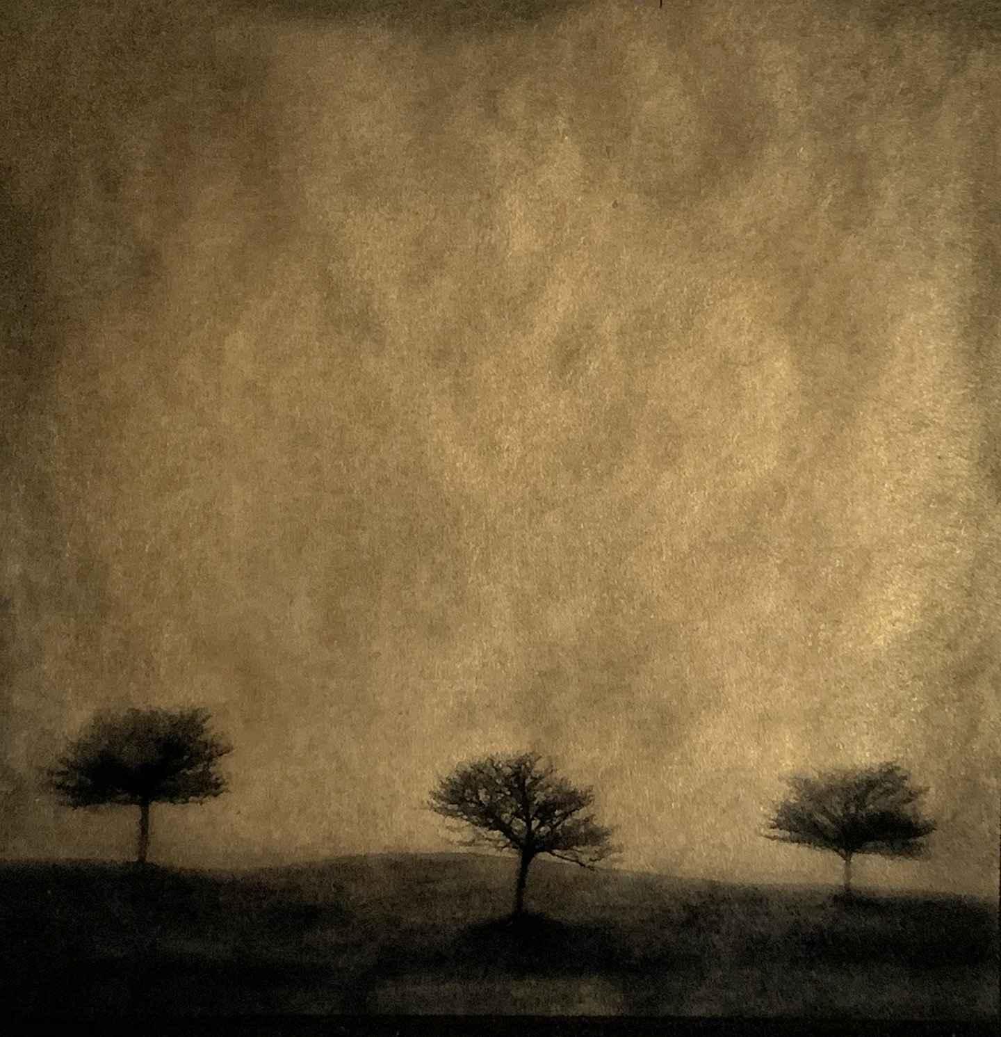 Three Sisters by  Vicki Reed - Masterpiece Online